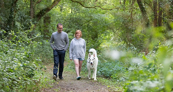 Camping with your dog in the Peak District and Derbyshire