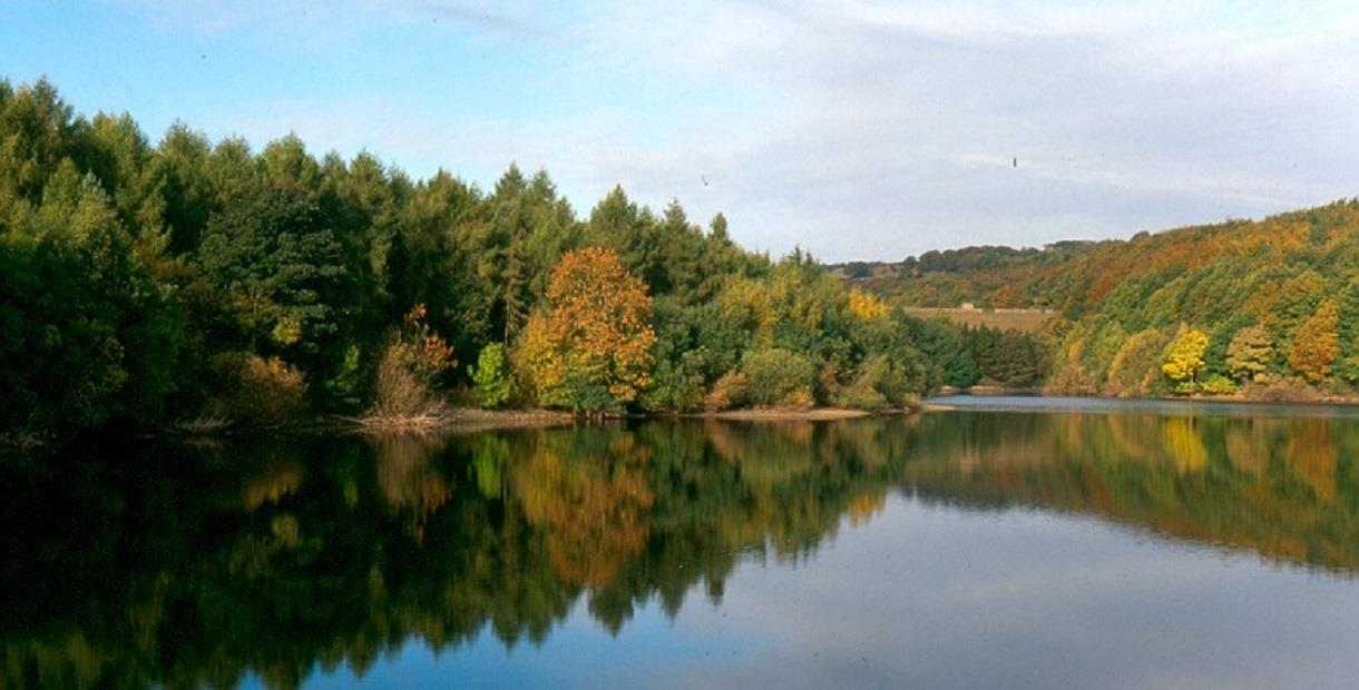 Linacre Reservoirs Things To Do In The Peak District And