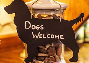 Dog friendly places to stay in the Peak District and Derbyshire