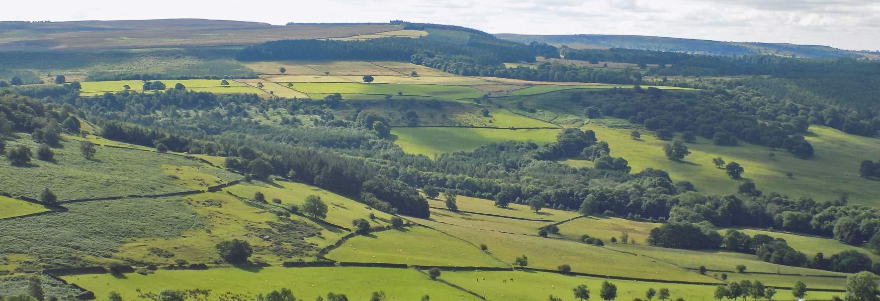 Explore the Peak District Landscape this Summer