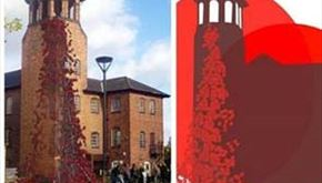 Weeping Window Poppies at Derby Silk Mill