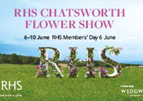 Thumbnail for RHS Chatsworth Flower Show