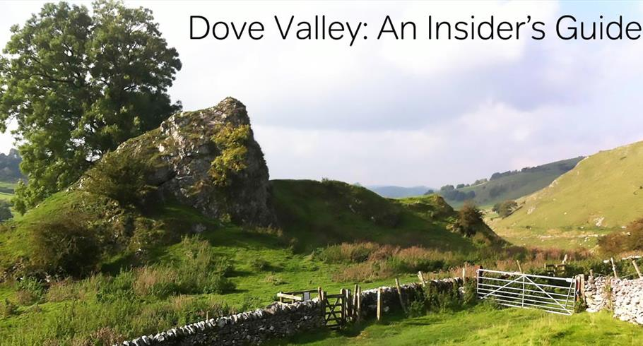 Dove Valley: An Insider's Guide