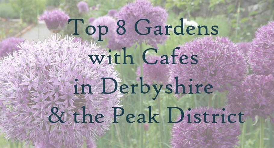 Top 8 Gardens with Cafes in Derbyshire & the Peak District Area