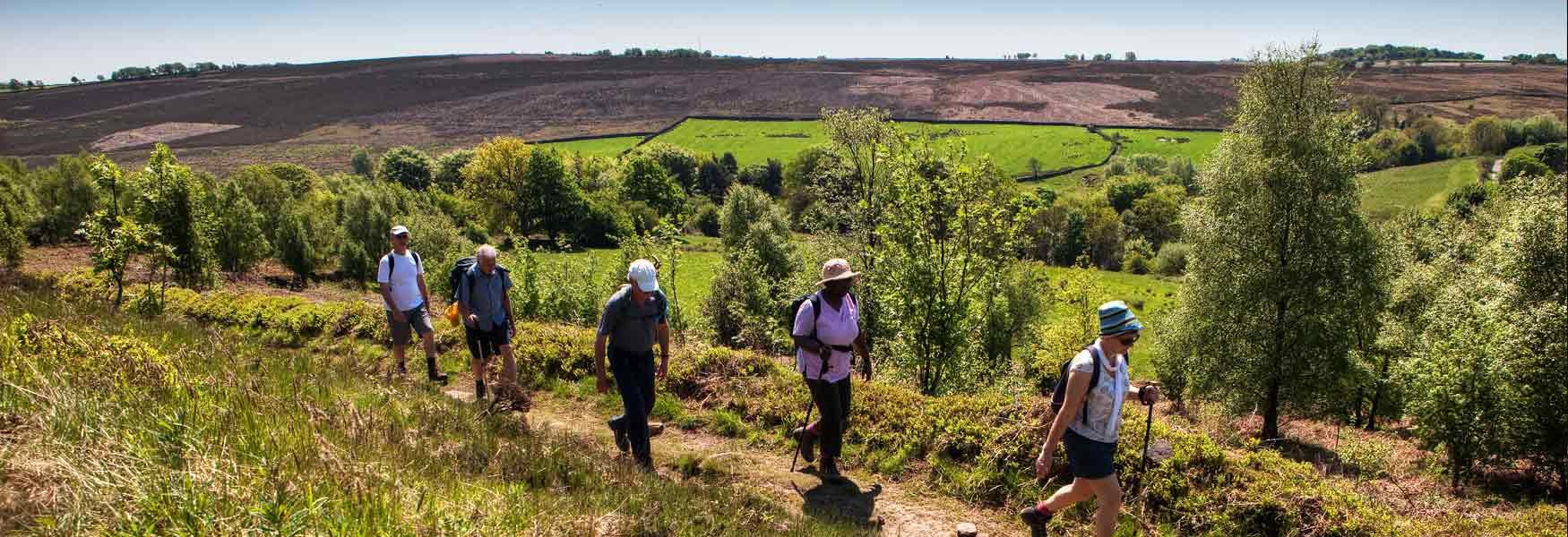 Why not join a guided walk?