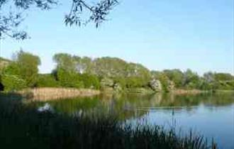 Peter Fidler Nature Reserve