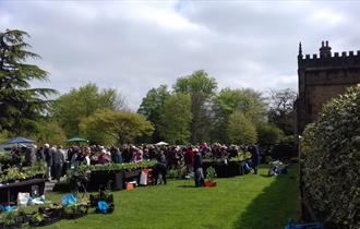 Plant Fairs at Renishaw Hall