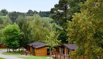 Our luxury lodges are set within a quiet park