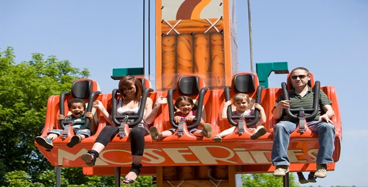 The Drop Tower