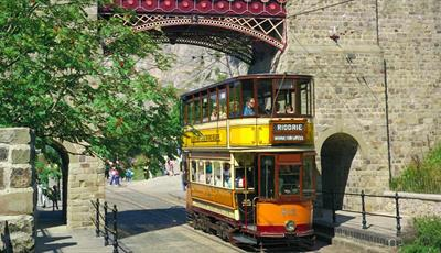 Ride our world renowned vintage trams