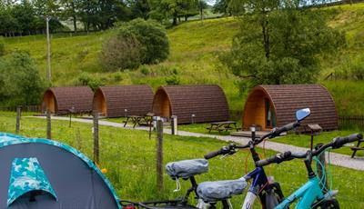 Hayfield Camping Pods