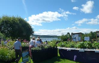 FREE ENTRY to this popular Plant Hunters' Fair at Carsington Water featuring many highly respected specialist nurseries with a great range of perennia