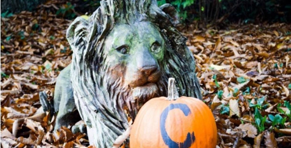 Halloween Trail at Renishaw Hall