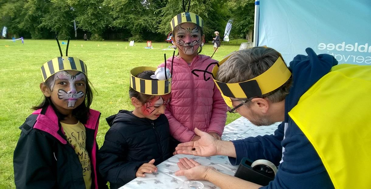 Bumblebees are Superheroes! Picnic in the Park