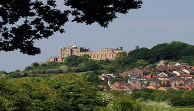 Magical History Tour-Bolsover